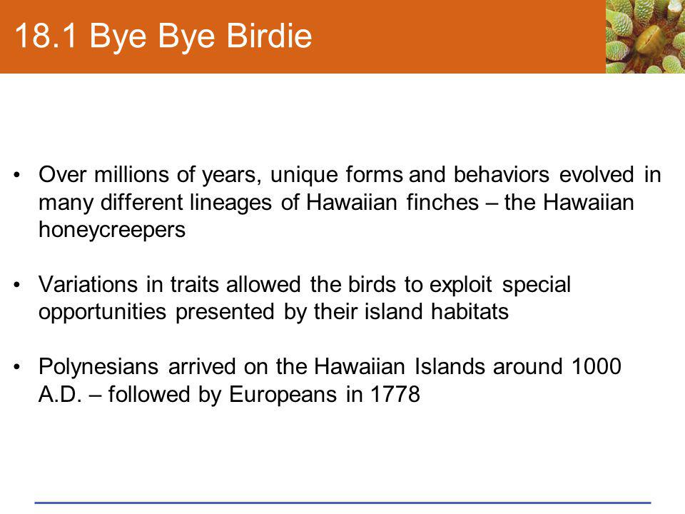 18.1 Bye Bye Birdie Over millions of years, unique forms and behaviors evolved in many different lineages of Hawaiian finches – the Hawaiian honeycree