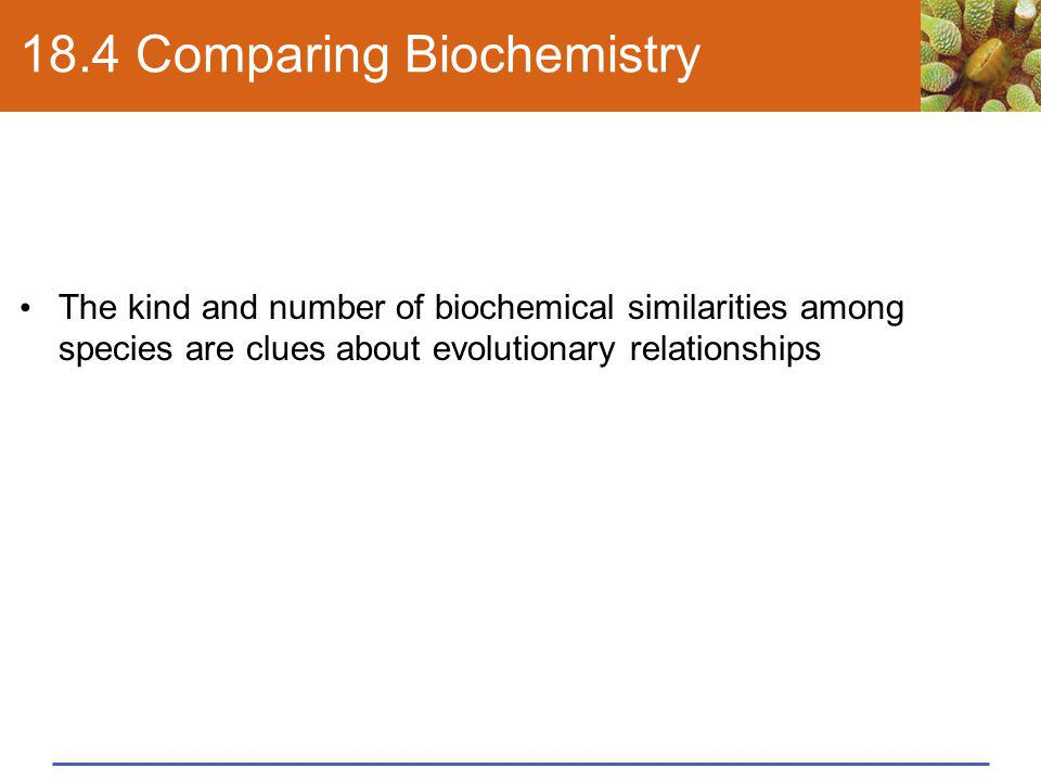 18.4 Comparing Biochemistry The kind and number of biochemical similarities among species are clues about evolutionary relationships