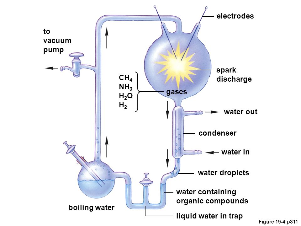 boiling water gases water in spark discharge electrodes water droplets water containing organic compounds liquid water in trap CH 4 NH 3 H 2 O H 2 to