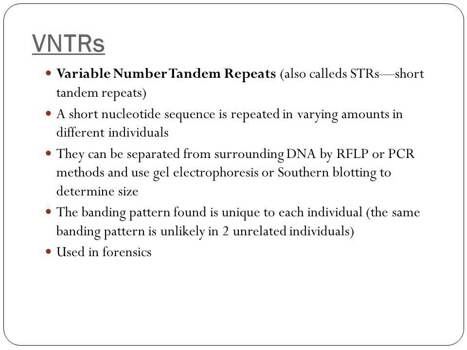 VNTRs Variable Number Tandem Repeats (also calleds STRs—short tandem repeats) A short nucleotide sequence is repeated in varying amounts in different individuals They can be separated from surrounding DNA by RFLP or PCR methods and use gel electrophoresis or Southern blotting to determine size The banding pattern found is unique to each individual (the same banding pattern is unlikely in 2 unrelated individuals) Used in forensics