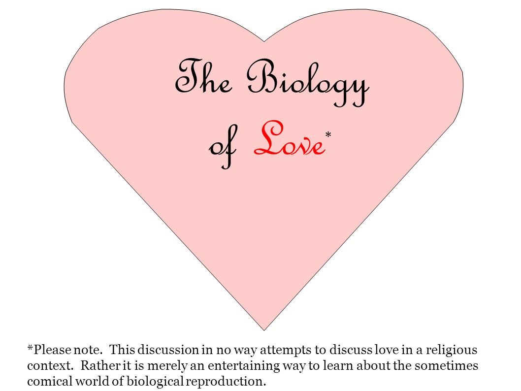 The Biology of Love * *Please note. This discussion in no way attempts to discuss love in a religious context. Rather it is merely an entertaining way