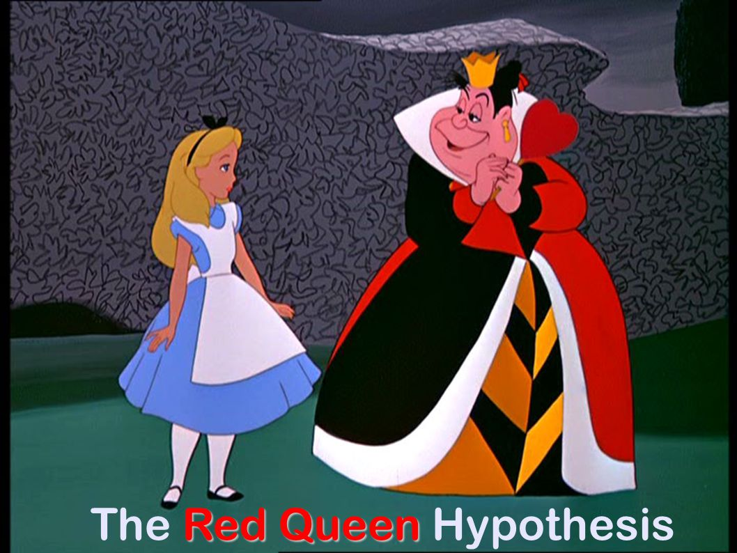 Red Queen The Red Queen Hypothesis