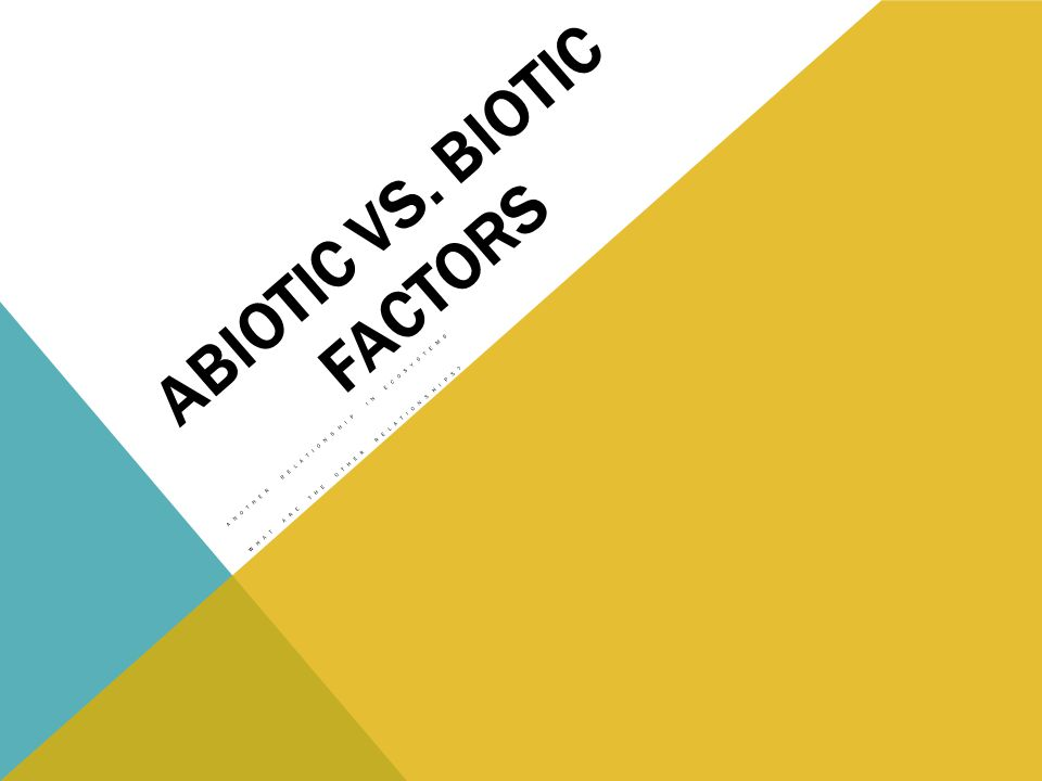 ABIOTIC VS. BIOTIC FACTORS ANOTHER RELATIONSHIP IN ECOSYSTEMS WHAT ARE THE OTHER RELATIONSHIPS
