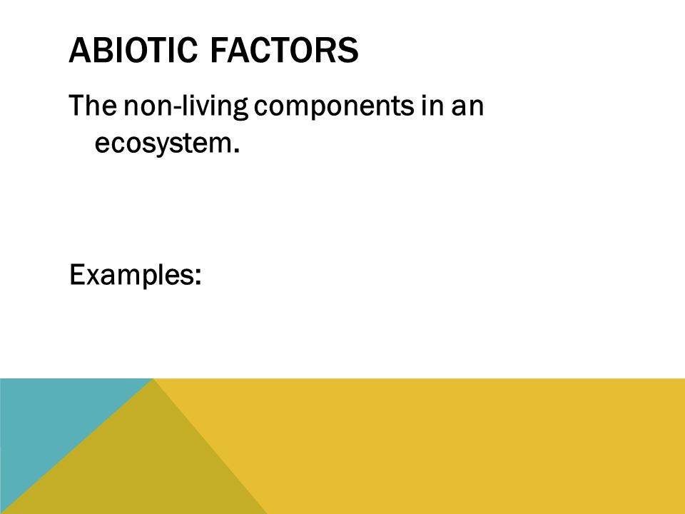 ABIOTIC FACTORS The non-living components in an ecosystem. Examples: