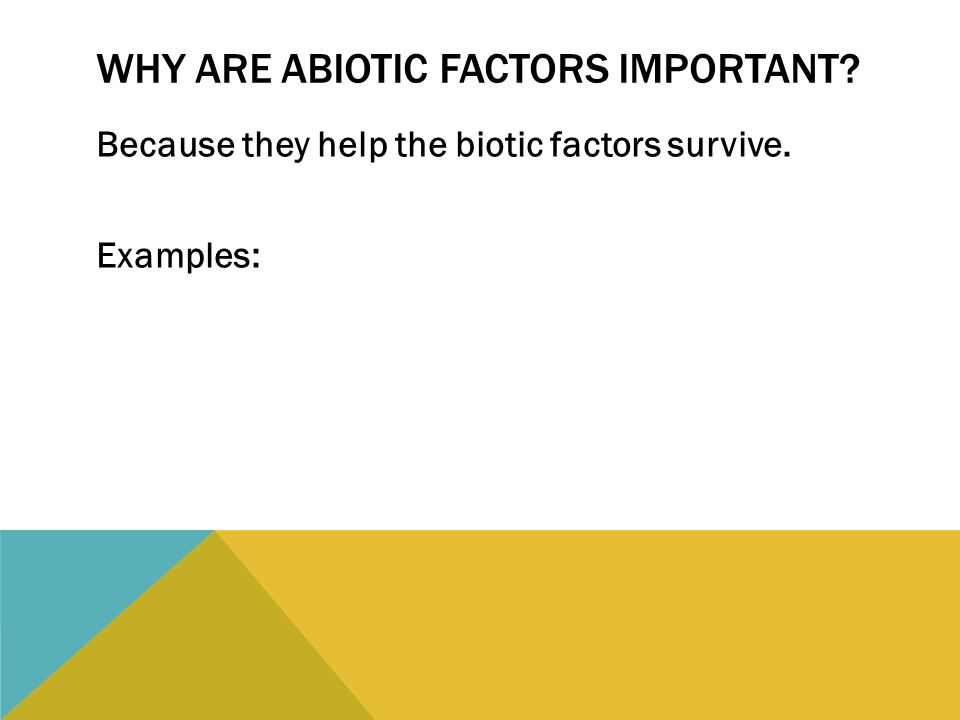 WHY ARE ABIOTIC FACTORS IMPORTANT? Because they help the biotic factors survive. Examples: