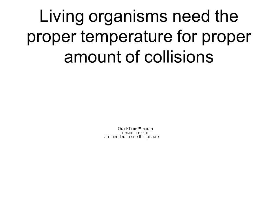 Living organisms have a temp.