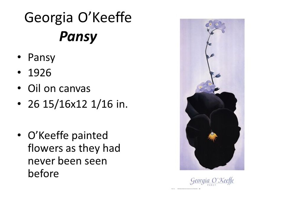 Georgia O'Keeffe Pansy Pansy 1926 Oil on canvas 26 15/16x12 1/16 in.