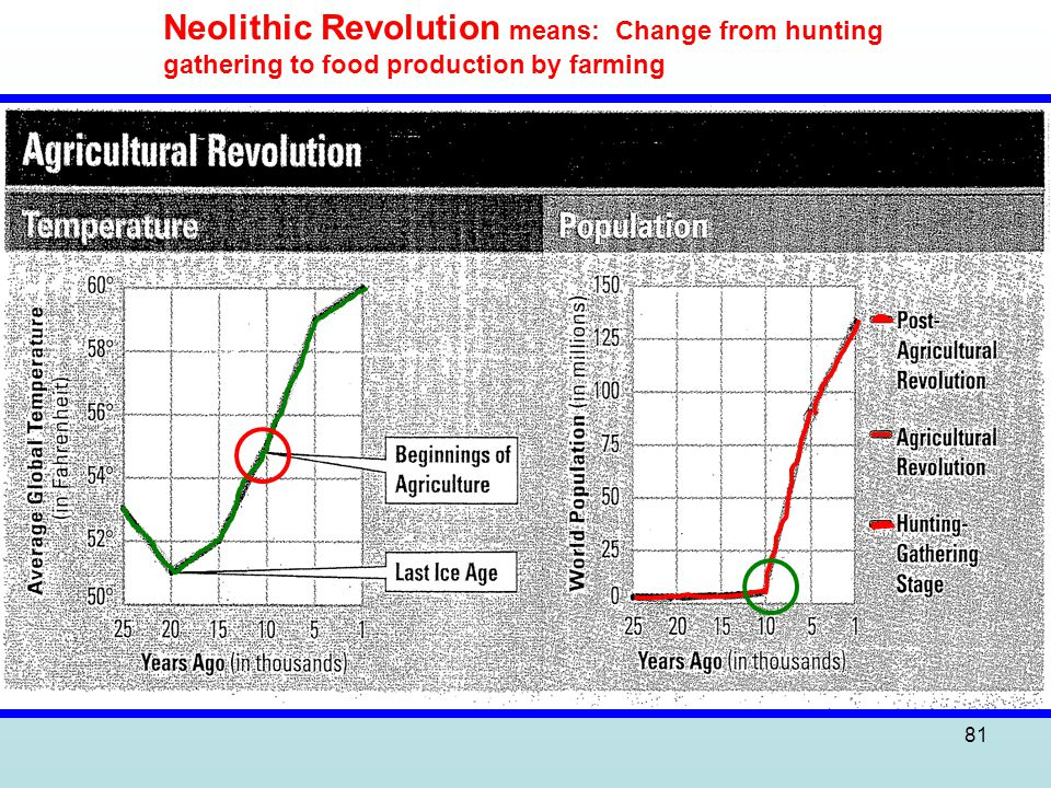 81 Neolithic Revolution means: Change from hunting gathering to food production by farming
