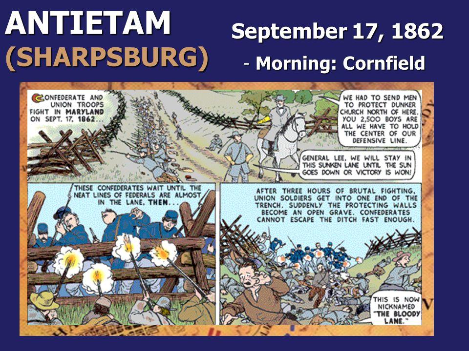 ANTIETAM(SHARPSBURG) - Morning: Cornfield September 17, 1862
