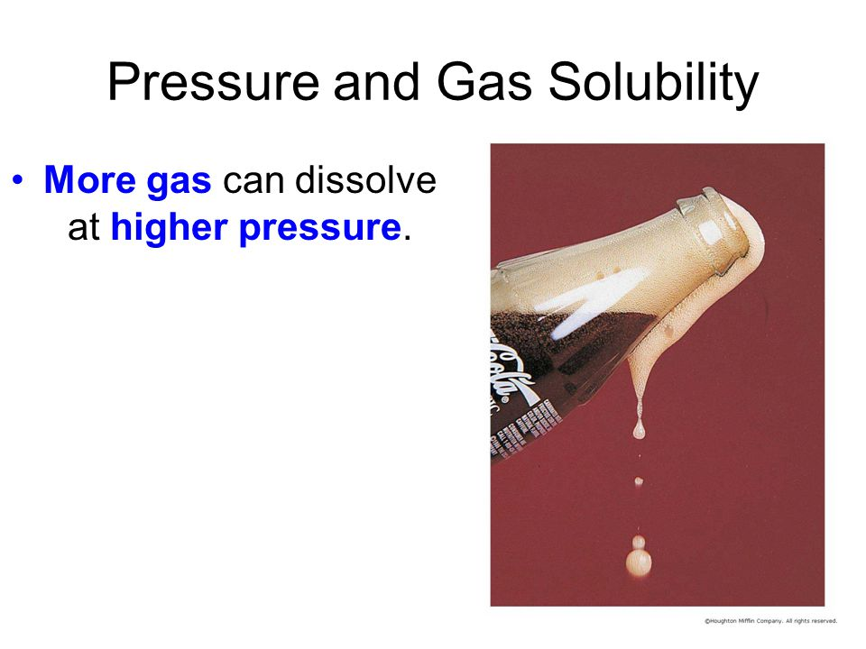 Pressure and Gas Solubility More gas can dissolve at higher pressure.