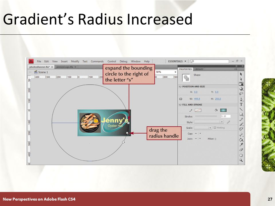 XP Gradient's Radius Increased New Perspectives on Adobe Flash CS427
