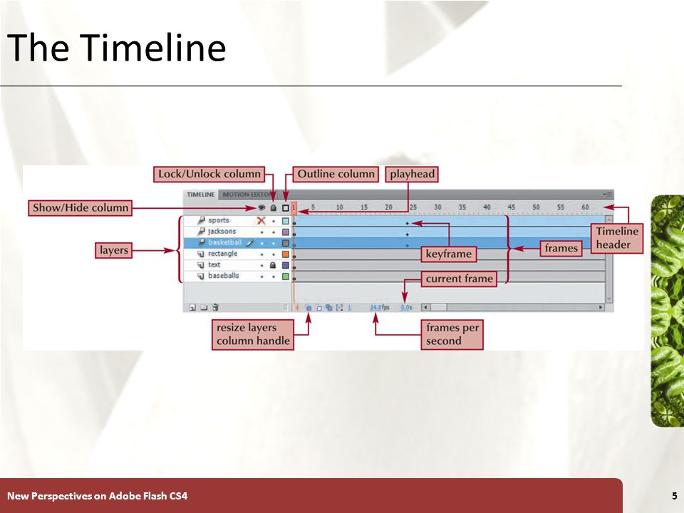 XP The Timeline New Perspectives on Adobe Flash CS45