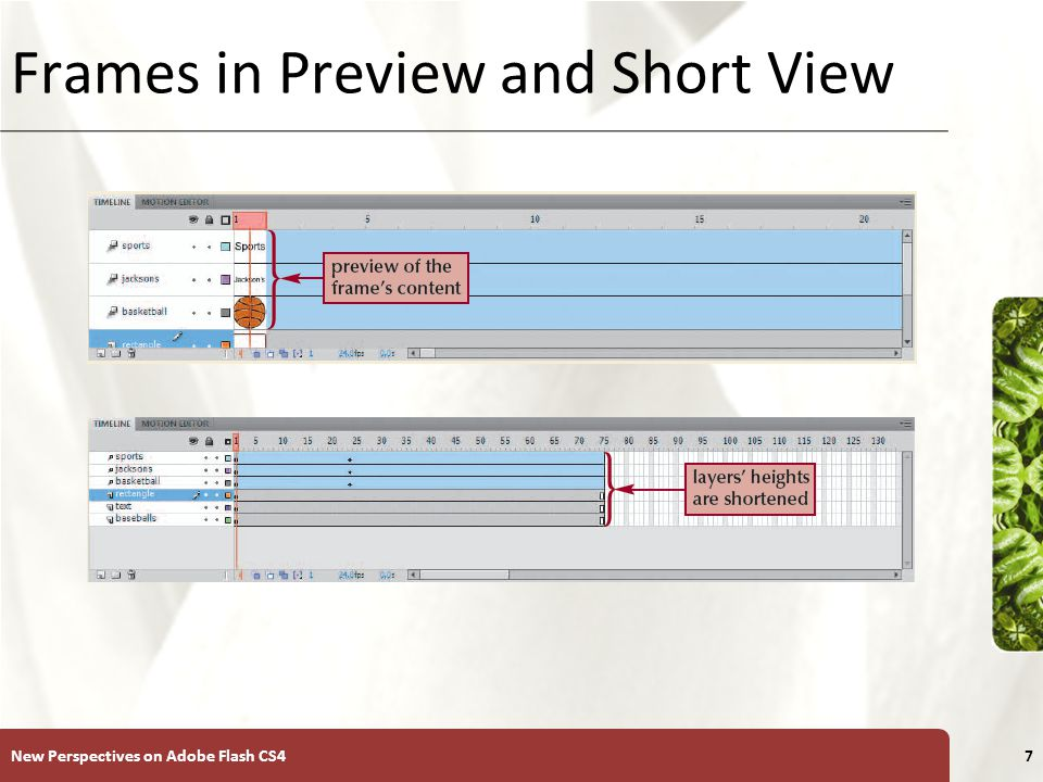 XP Frames in Preview and Short View New Perspectives on Adobe Flash CS47