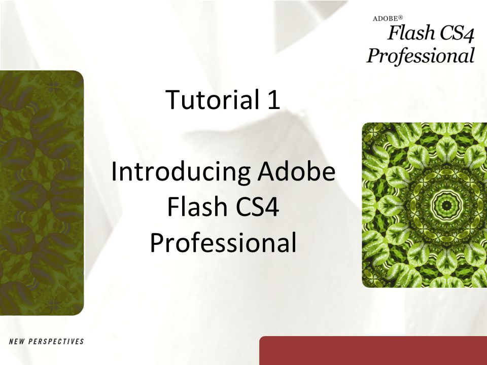 Tutorial 1 Introducing Adobe Flash CS4 Professional