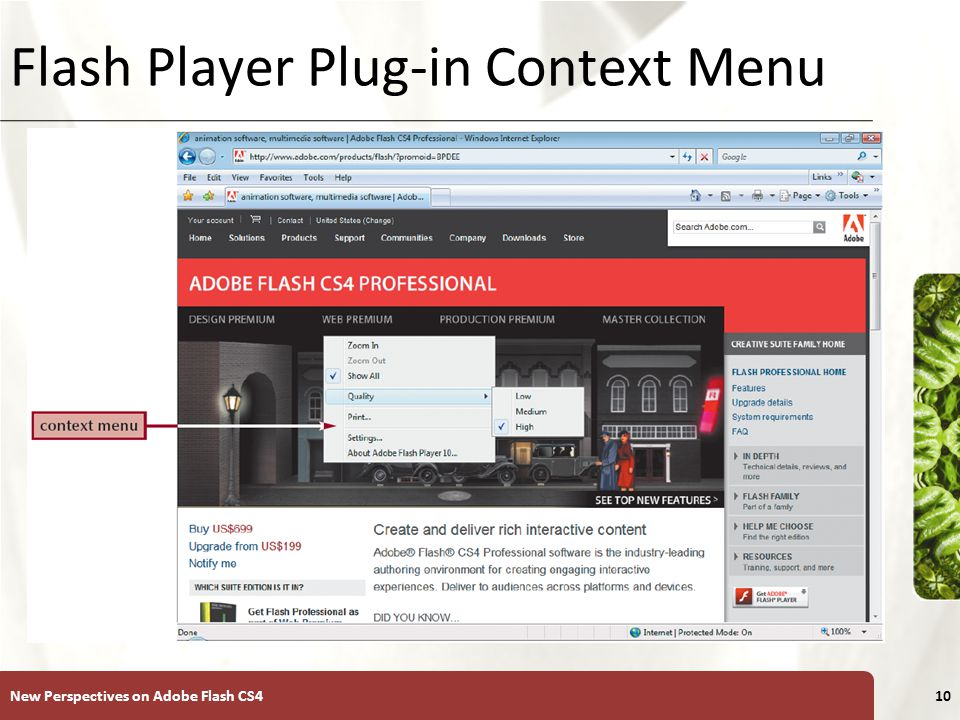 XP Flash Player Plug-in Context Menu New Perspectives on Adobe Flash CS410