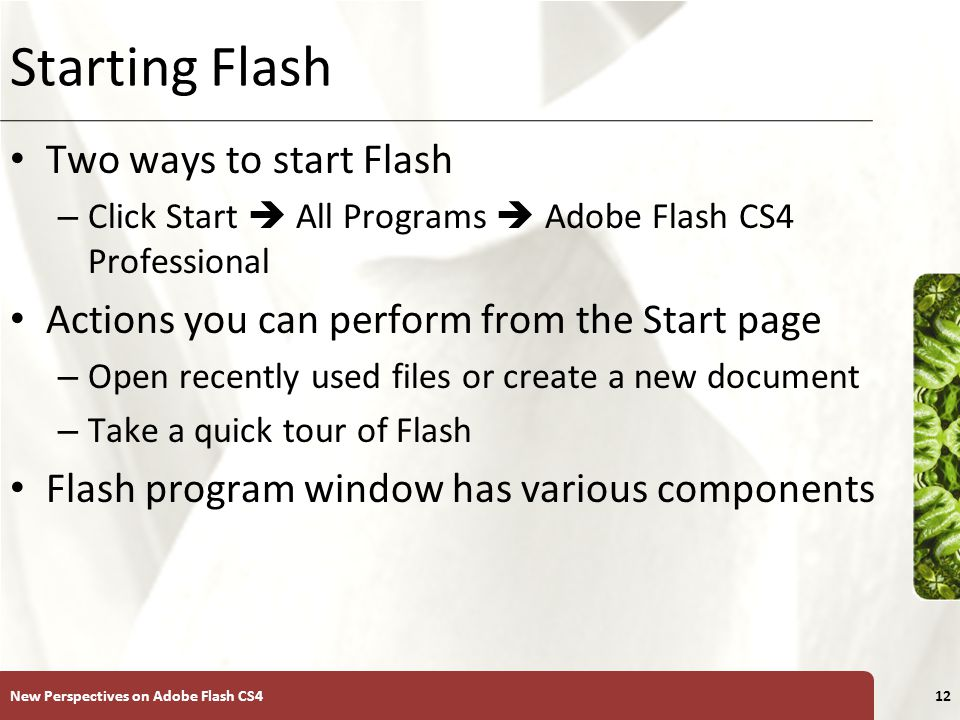 XP Starting Flash Two ways to start Flash – Click Start  All Programs  Adobe Flash CS4 Professional Actions you can perform from the Start page – Open recently used files or create a new document – Take a quick tour of Flash Flash program window has various components New Perspectives on Adobe Flash CS412