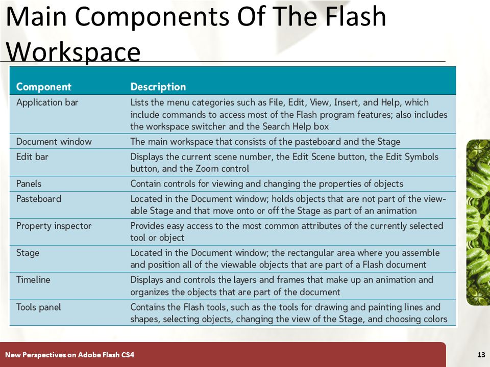 XP Main Components Of The Flash Workspace New Perspectives on Adobe Flash CS413