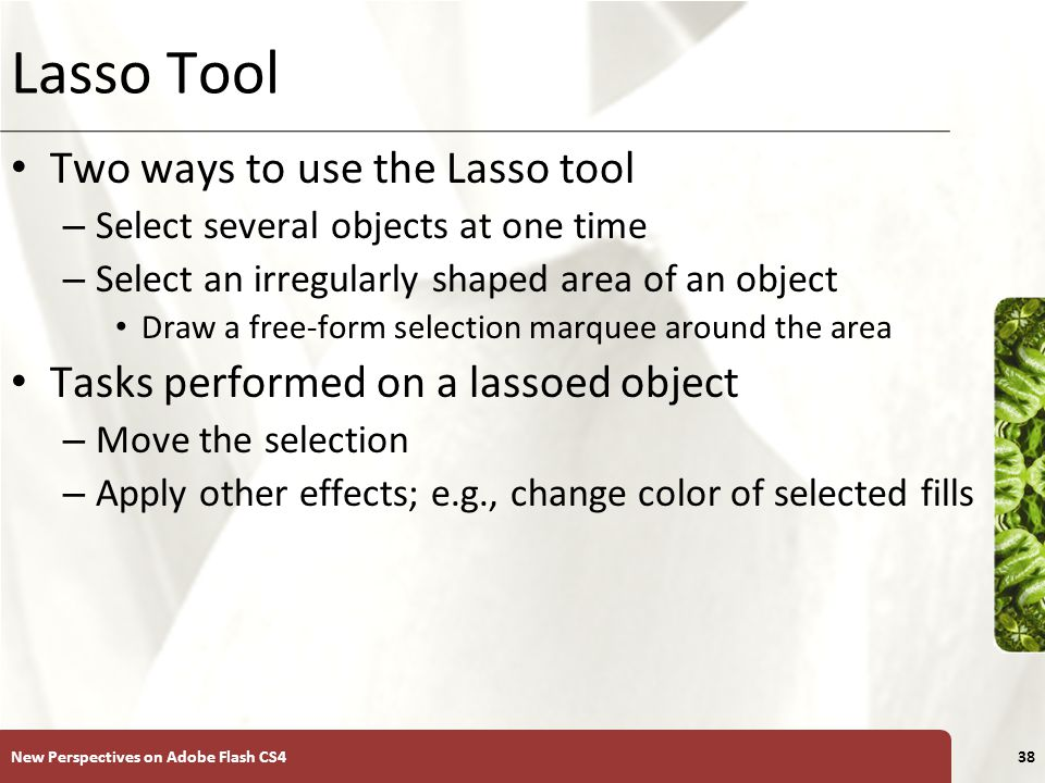 XP Lasso Tool Two ways to use the Lasso tool – Select several objects at one time – Select an irregularly shaped area of an object Draw a free-form selection marquee around the area Tasks performed on a lassoed object – Move the selection – Apply other effects; e.g., change color of selected fills New Perspectives on Adobe Flash CS438