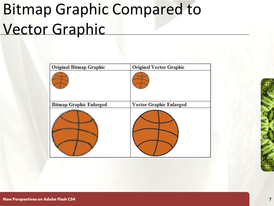 XP Bitmap Graphic Compared to Vector Graphic New Perspectives on Adobe Flash CS47