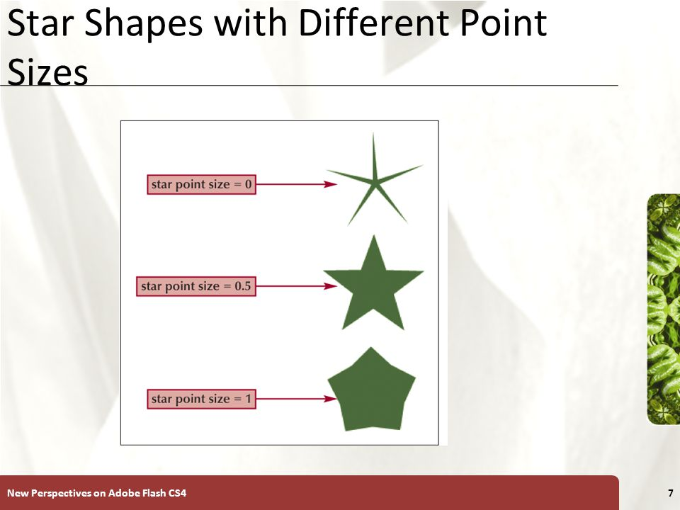 XP Star Shapes with Different Point Sizes New Perspectives on Adobe Flash CS47