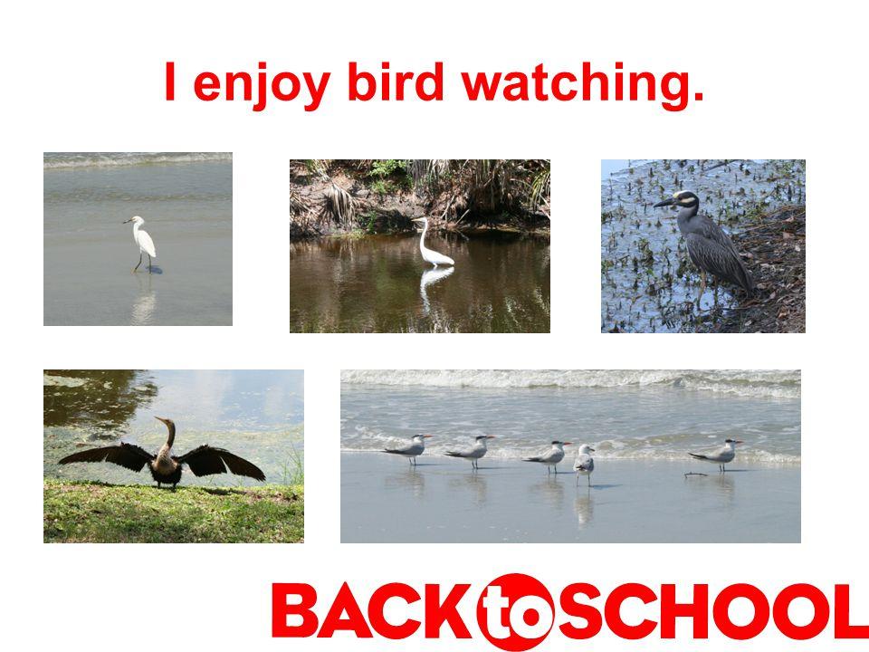 I enjoy bird watching.