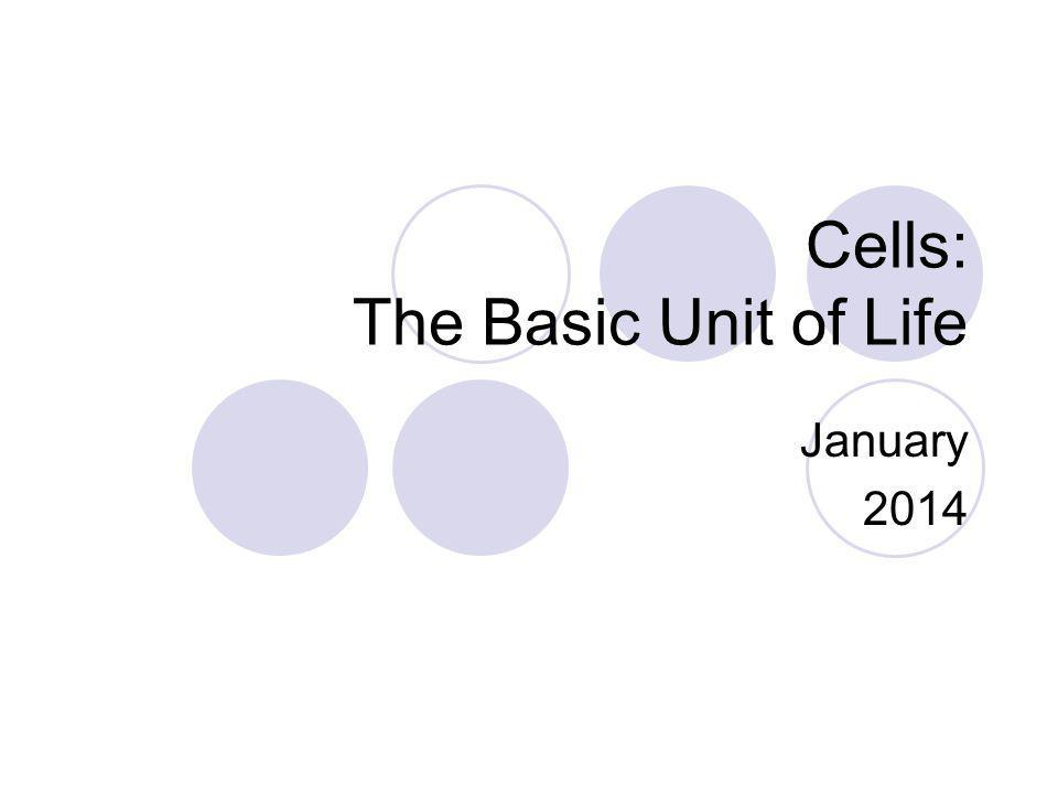 Cells: The Basic Unit of Life January 2014