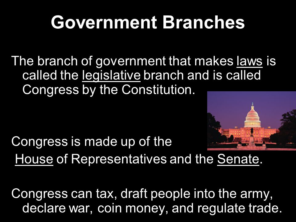 Government Branches The branch of government that makes laws is called the legislative branch and is called Congress by the Constitution.