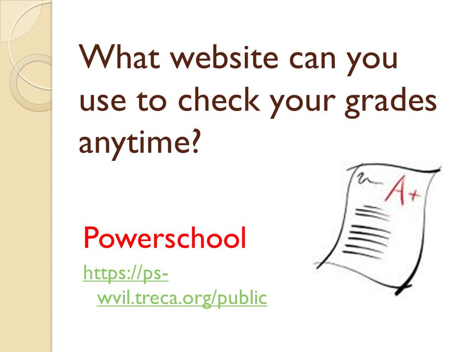 What website can you use to check your grades anytime.