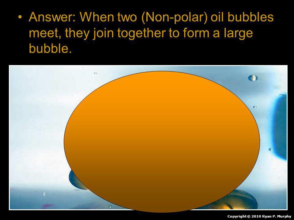 Answer: When two (Non-polar) oil bubbles meet, they join together to form a large bubble.
