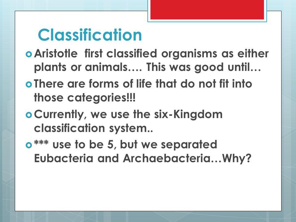 The Six Kingdoms  Archaebacteria  Eubacteria  Protista  Fungi  Plantae  Animalia