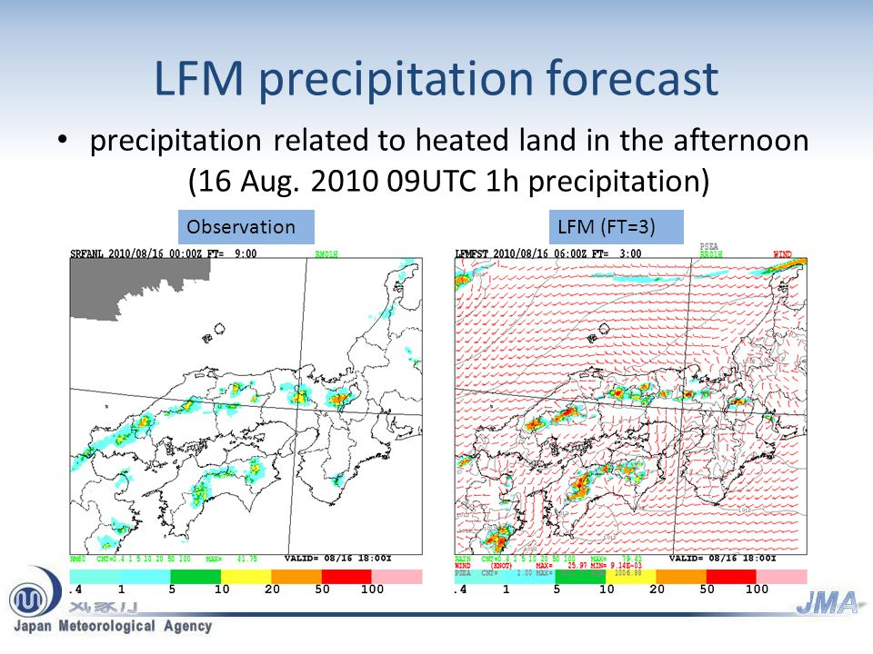 LFM precipitation forecast precipitation related to heated land in the afternoon (16 Aug.