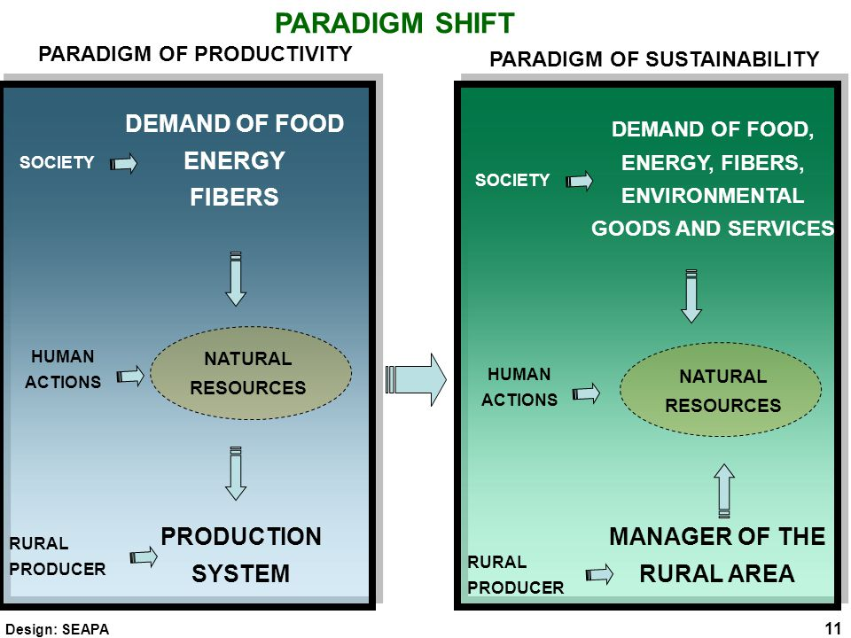 PARADIGM SHIFT NATURAL RESOURCES DEMAND OF FOOD ENERGY FIBERS PRODUCTION SYSTEM HUMAN ACTIONS SOCIETY RURAL PRODUCER NATURAL RESOURCES DEMAND OF FOOD, ENERGY, FIBERS, ENVIRONMENTAL GOODS AND SERVICES MANAGER OF THE RURAL AREA HUMAN ACTIONS SOCIETY RURAL PRODUCER PARADIGM OF PRODUCTIVITY PARADIGM OF SUSTAINABILITY 11 Design: SEAPA