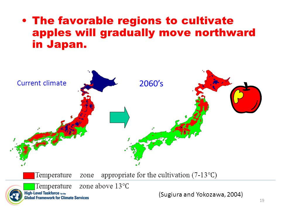 19 The favorable regions to cultivate apples will gradually move northward in Japan. Temperature zone above 13 ℃ Current climate 2060's Temperature zo