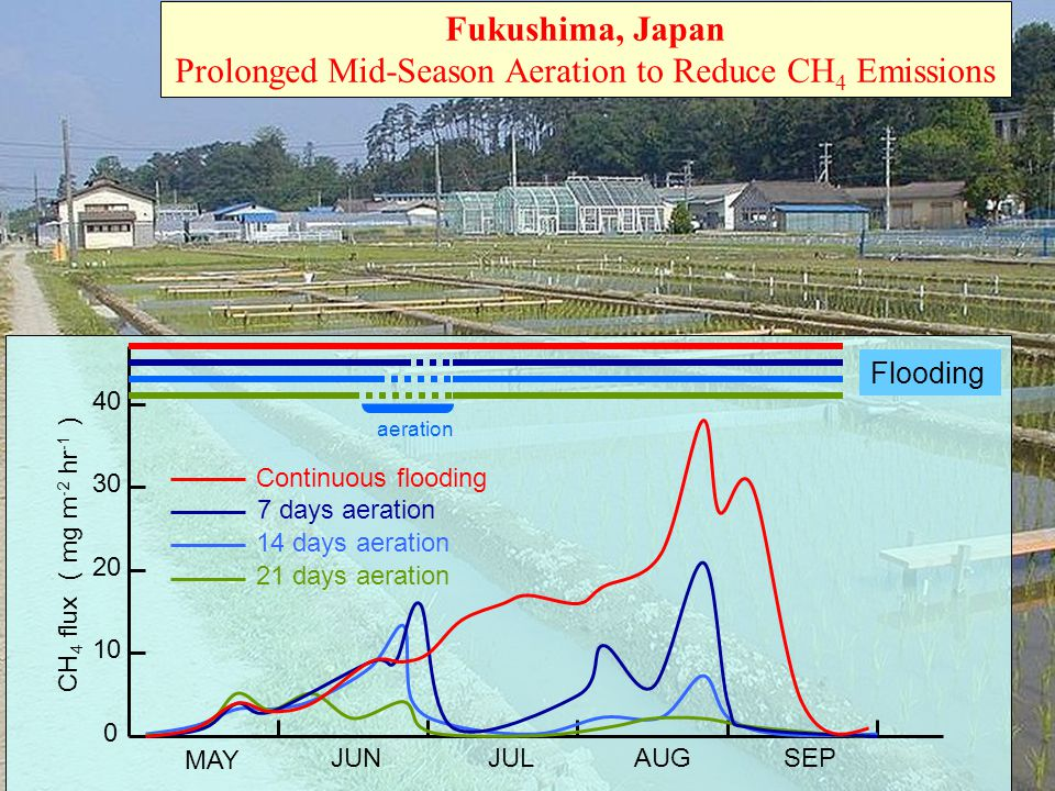 0 10 20 30 40 CH 4 flux ( mg m -2 hr -1 ) MAY JUNJULAUGSEP 14 days aeration 21 days aeration 7 days aeration aeration Fukushima, Japan Prolonged Mid-S