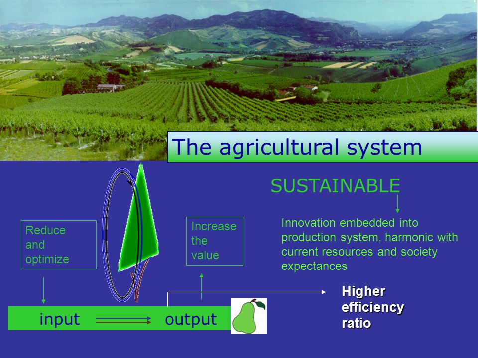 SUSTAINABLE The agricultural system input output Reduce and optimize Increase the value Higher efficiency ratio Innovation embedded into production system, harmonic with current resources and society expectances
