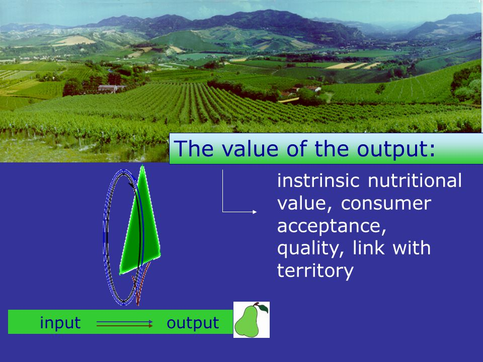 instrinsic nutritional value, consumer acceptance, quality, link with territory The value of the output: input output