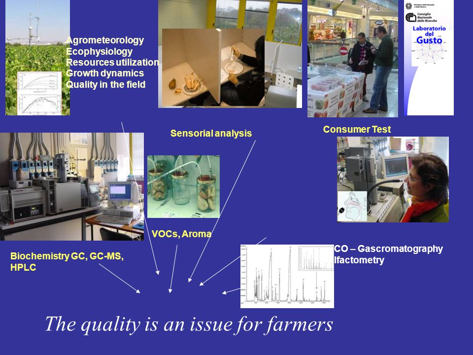 Sensorial analysis Consumer Test Biochemistry GC, GC-MS, HPLC VOCs, Aroma GCO – Gascromatography Olfactometry Agrometeorology Ecophysiology Resources utilization Growth dynamics Quality in the field The quality is an issue for farmers