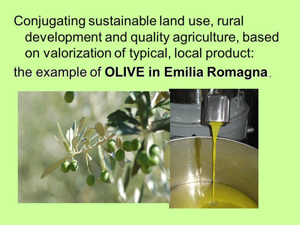 Conjugating sustainable land use, rural development and quality agriculture, based on valorization of typical, local product: the example of OLIVE in Emilia Romagna.