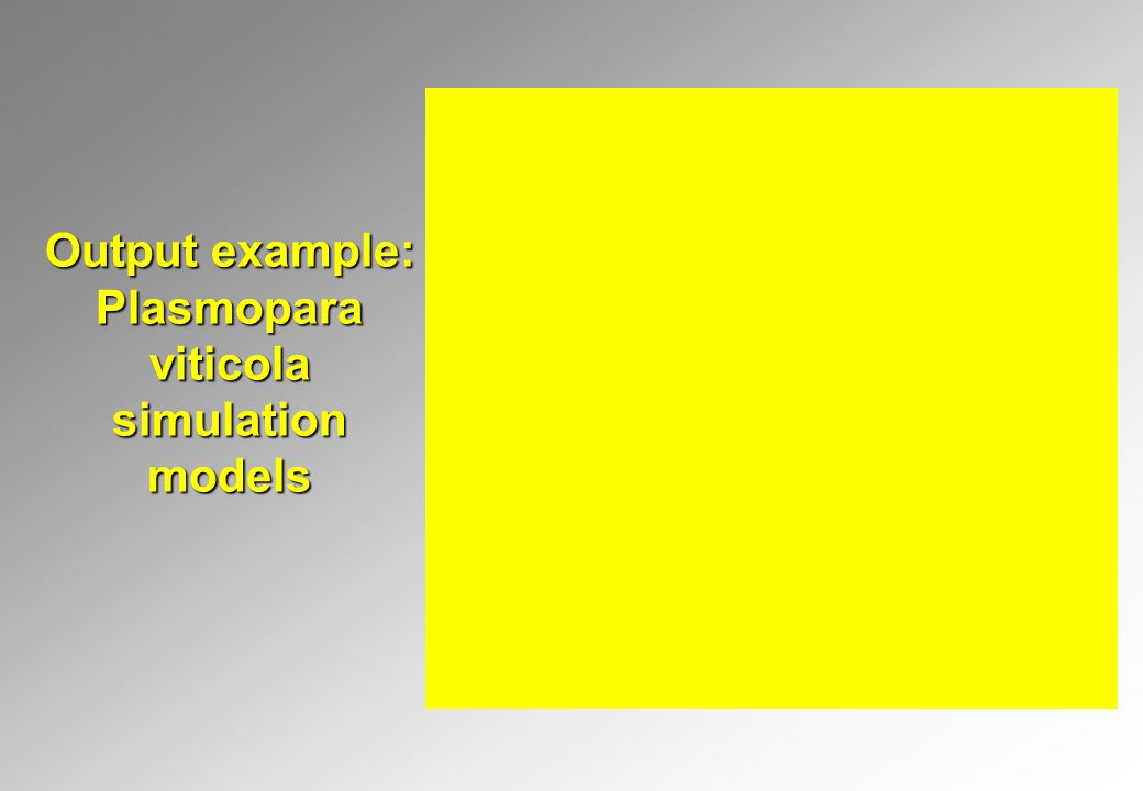 Output example: Plasmopara viticola simulation models
