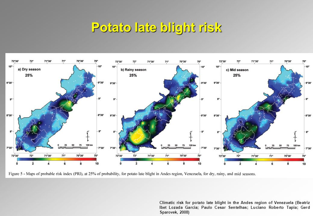 Potato late blight risk Climatic risk for potato late blight in the Andes region of Venezuela (Beatriz Ibet Lozada Garcia; Paulo Cesar Sentelhas; Luciano Roberto Tapia; Gerd Sparovek, 2008)