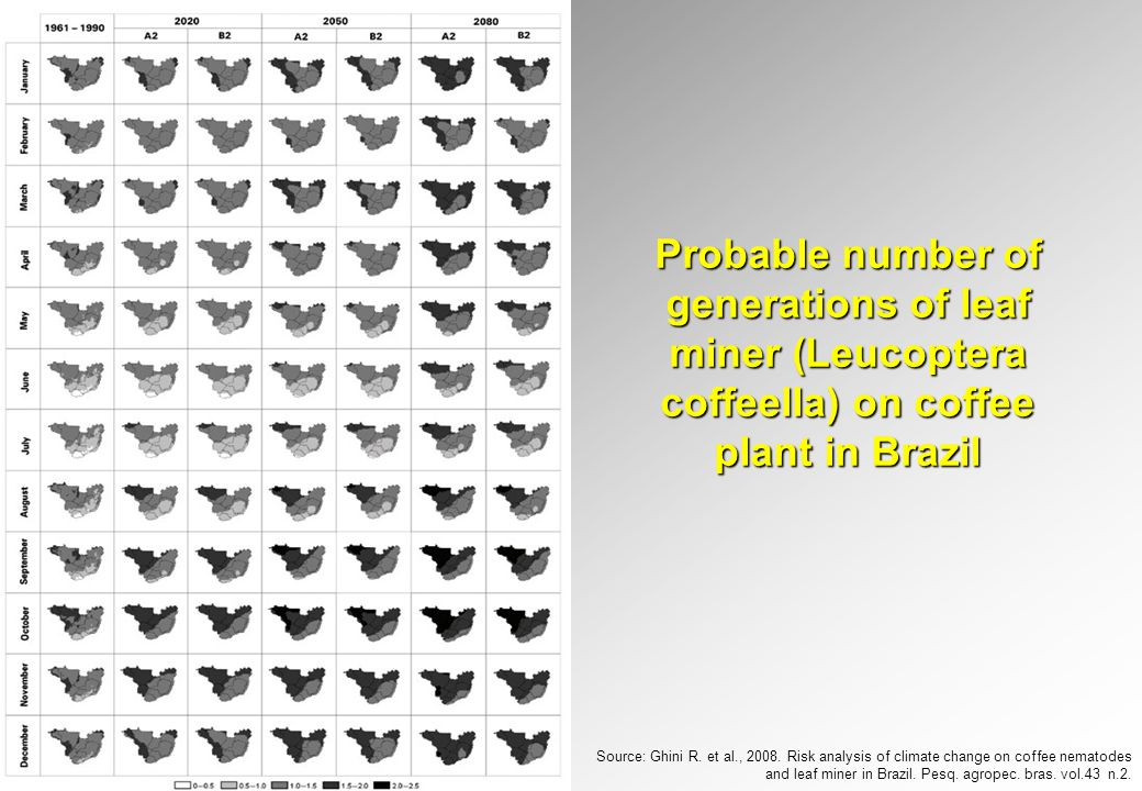 Probable number of generations of leaf miner (Leucoptera coffeella) on coffee plant in Brazil Source: Ghini R.