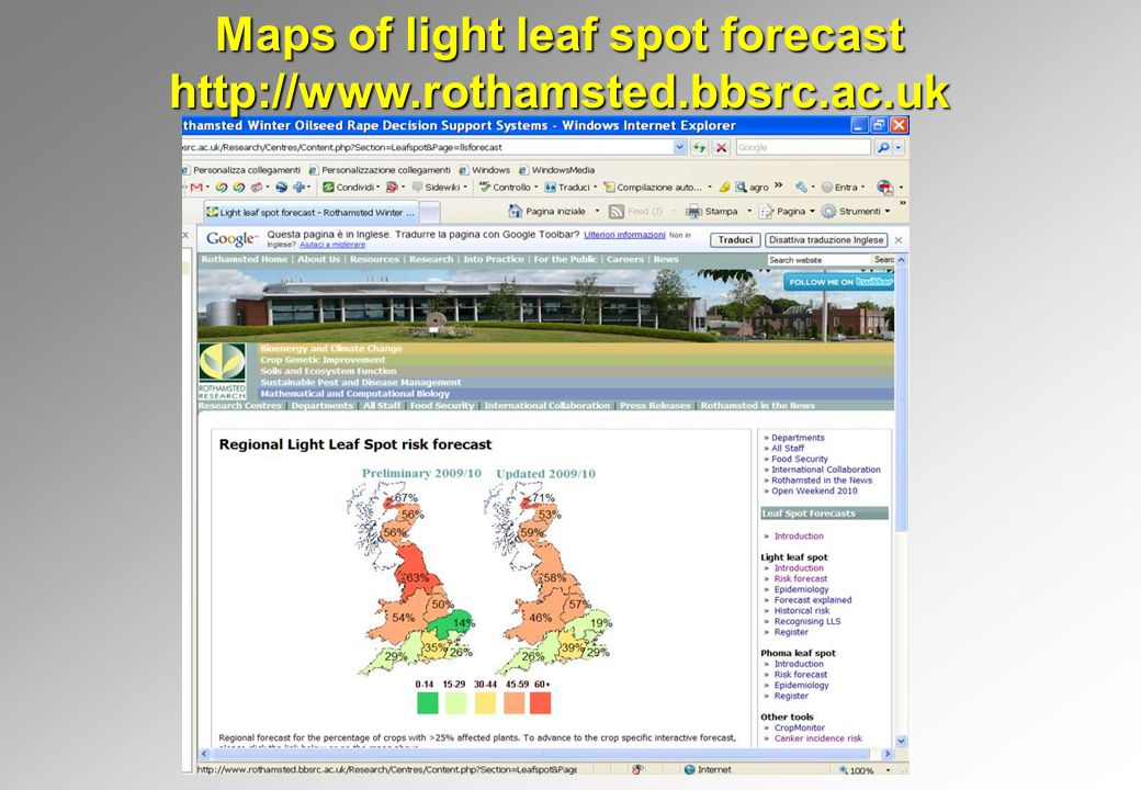 Maps of light leaf spot forecast http://www.rothamsted.bbsrc.ac.uk