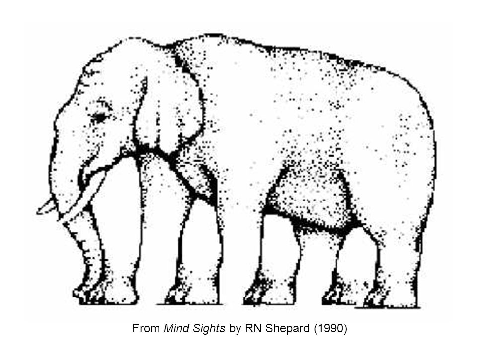 From Mind Sights by RN Shepard (1990)
