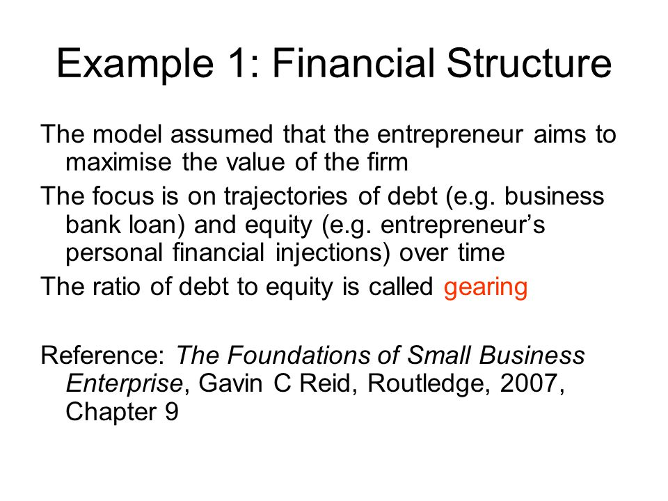 Example 1: Financial Structure The model assumed that the entrepreneur aims to maximise the value of the firm The focus is on trajectories of debt (e.g.