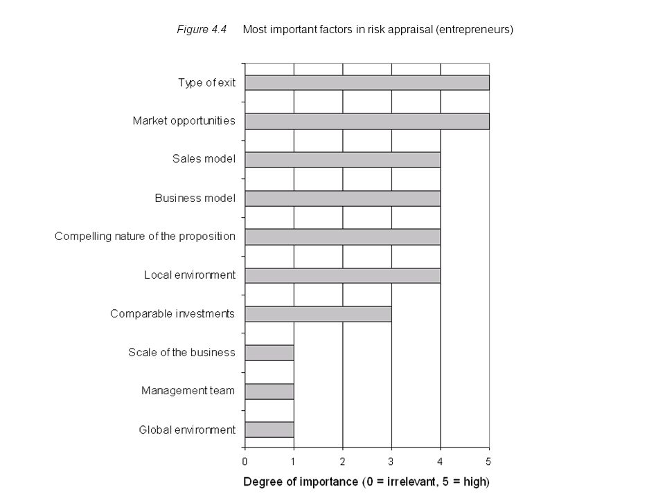 Figure 4.4 Most important factors in risk appraisal (entrepreneurs)