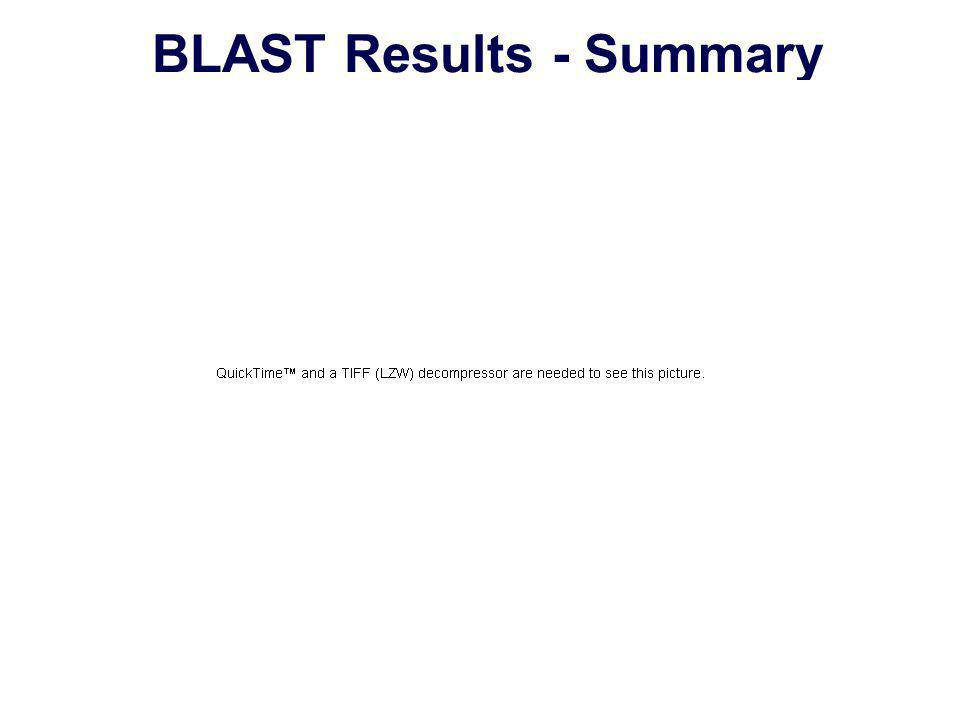 BLAST Results - Summary
