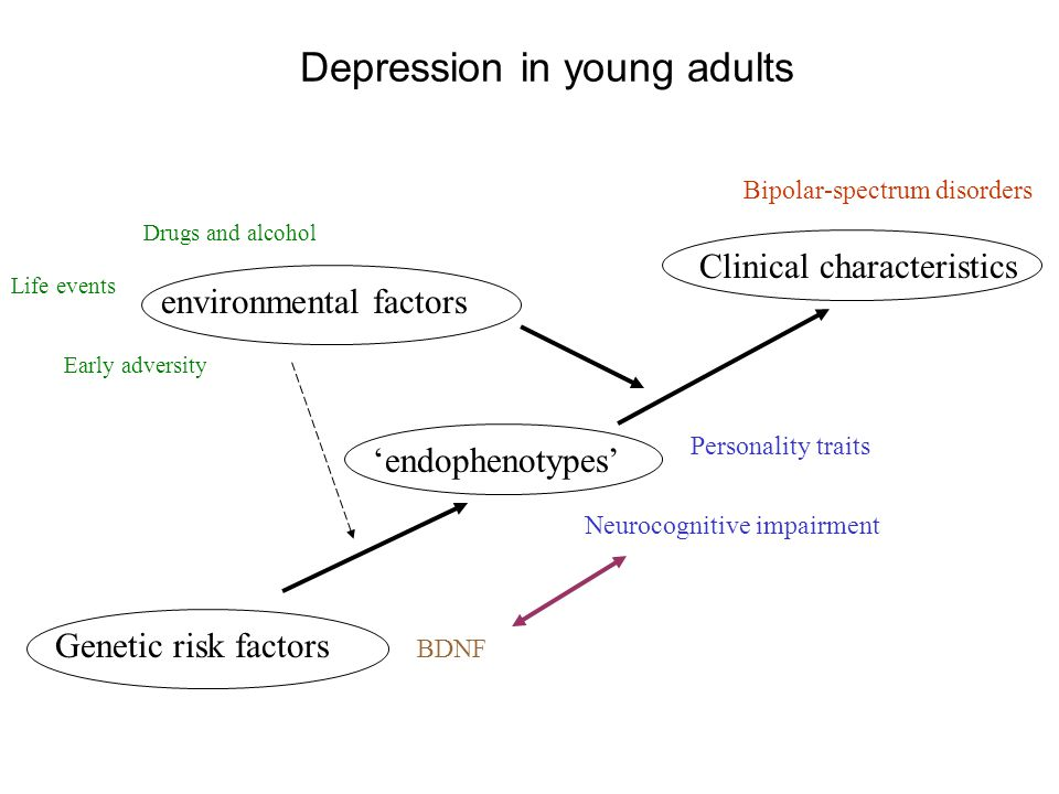Depression in young adults Clinical characteristics Genetic risk factors 'endophenotypes' environmental factors Personality traits Neurocognitive impa