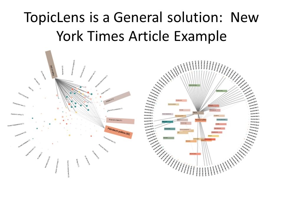 TopicLens is a General solution: New York Times Article Example