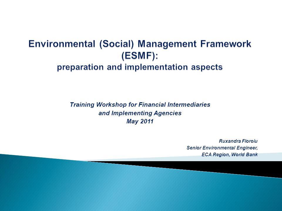 Training Workshop for Financial Intermediaries and Implementing Agencies May 2011 Ruxandra Floroiu Senior Environmental Engineer, ECA Region, World Bank