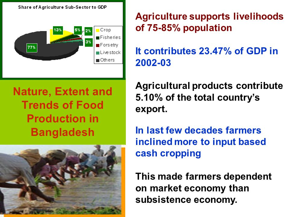 Food Security : A Conceptual Framework IT'S About------- Local agricultural production and production system.
